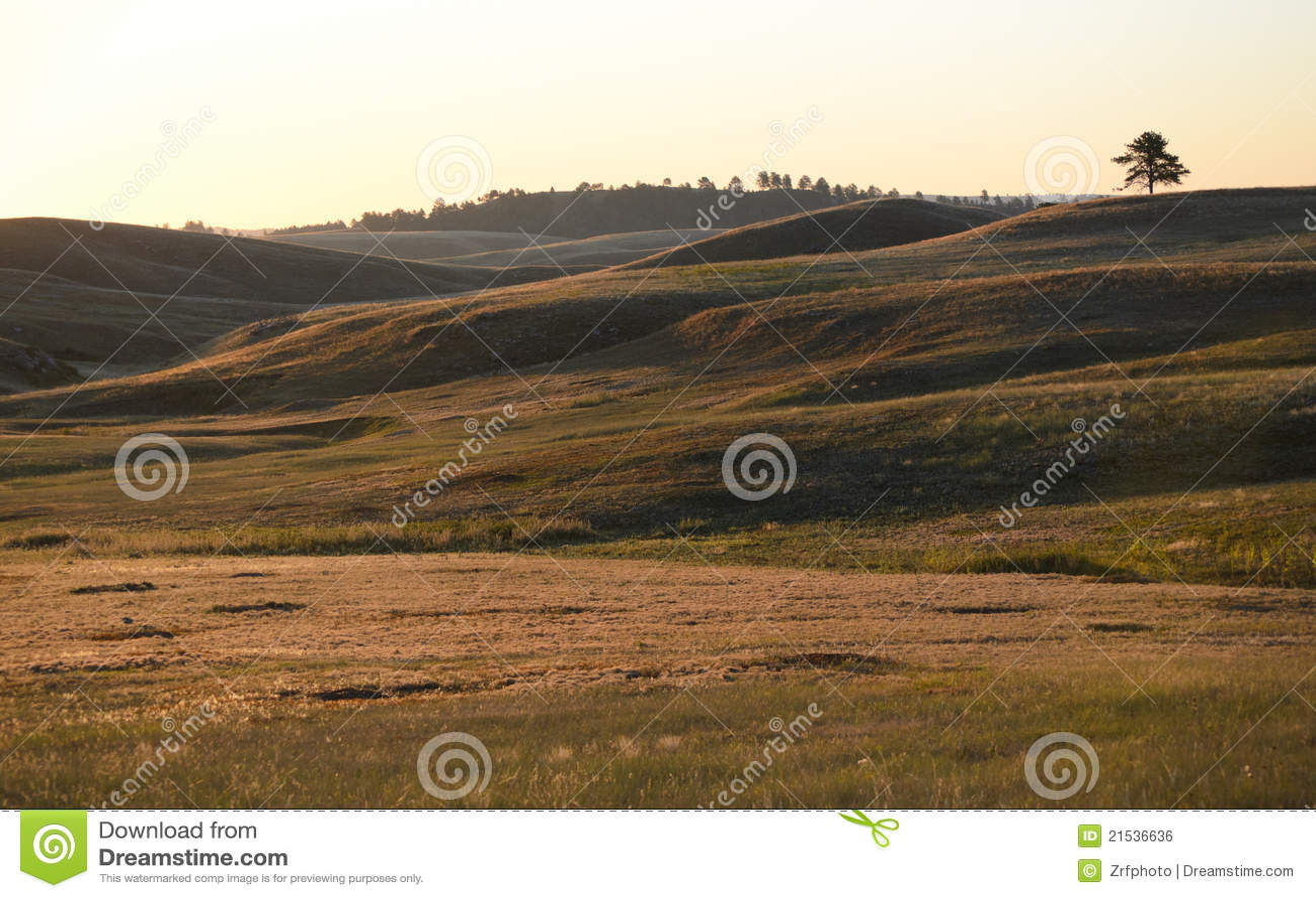 Wzgórza preryjni