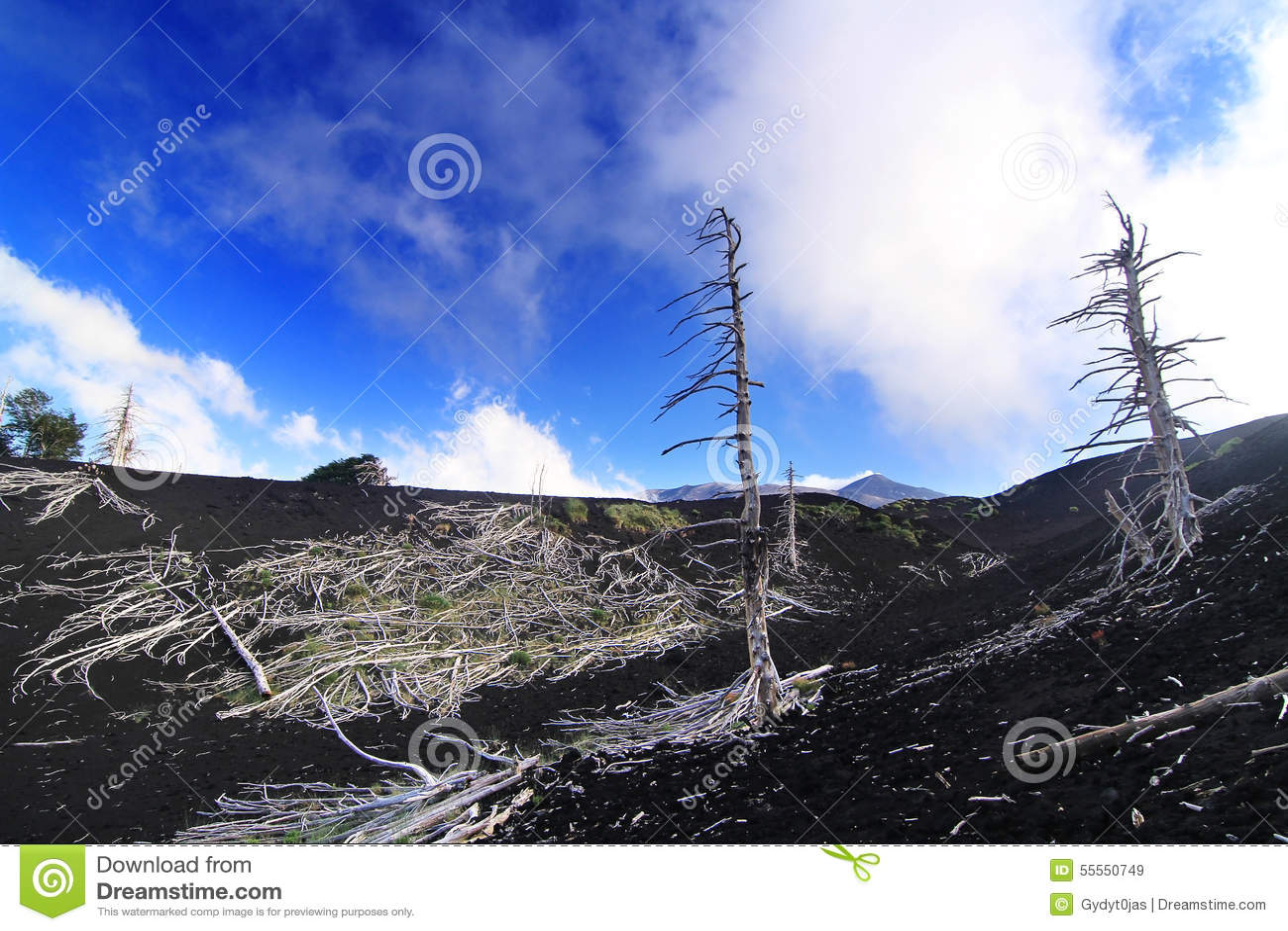 Wzmacniająca lawa na wulkanu skłonie Etna