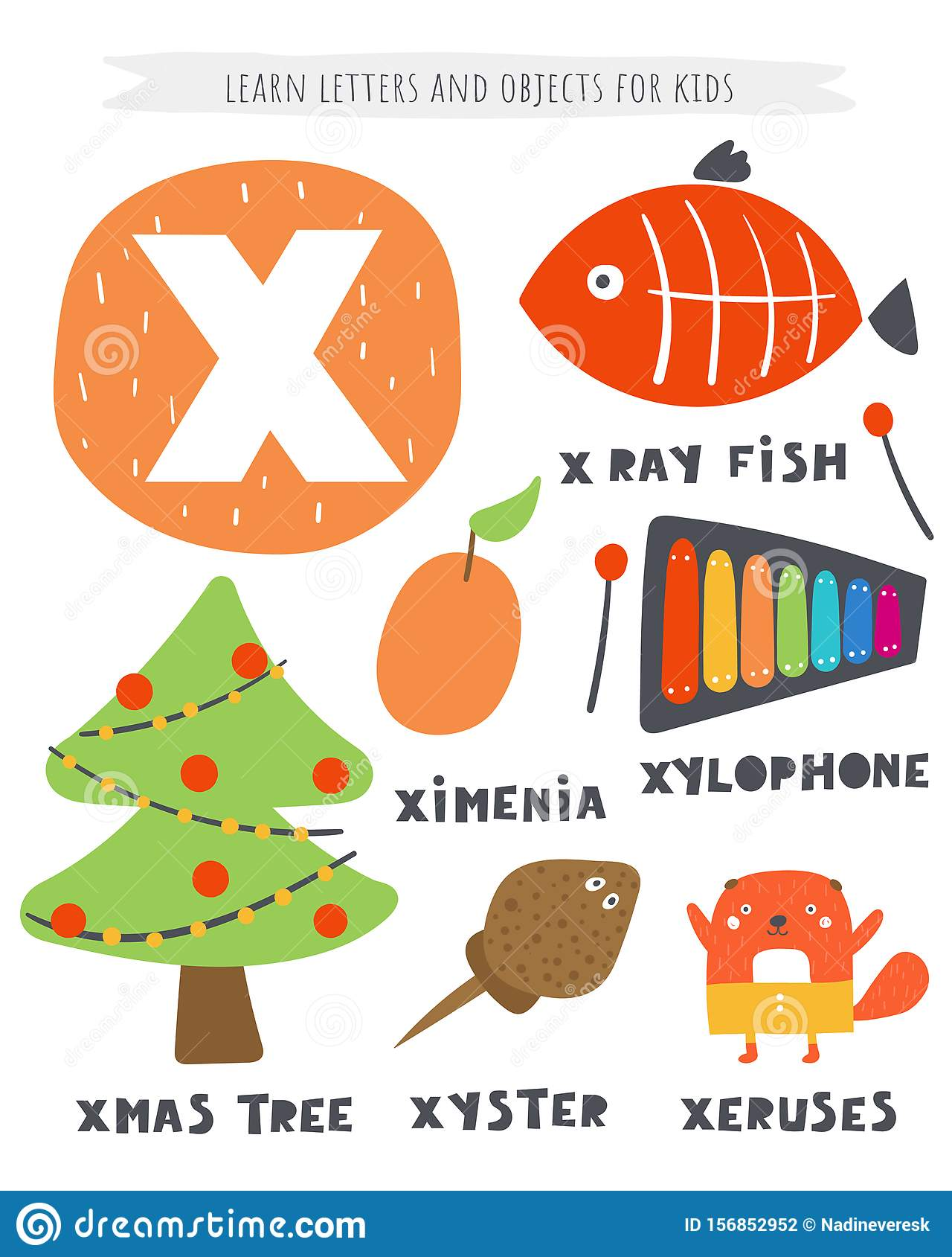 X Letter Objects And Animals Including Xmas Tree, X Ray Fish, Ximenia,  Xylophone, Xyster, Xeruses. Stock Vector - Illustration of blank,  collection: 156852952
