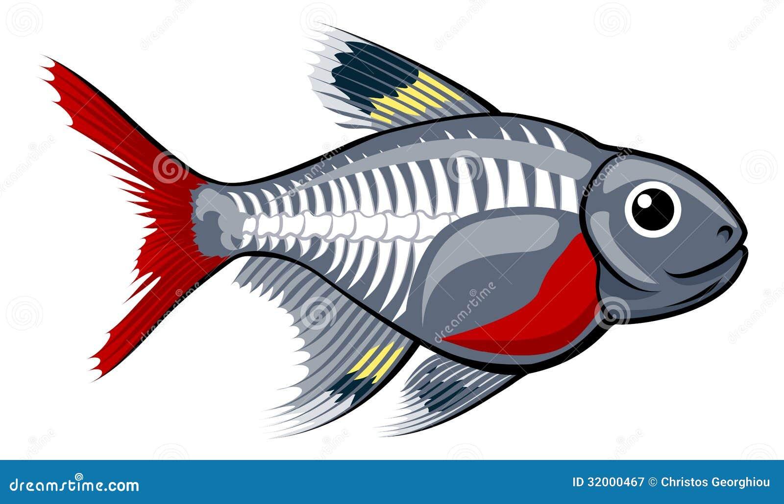 X-Ray Fish Clipart | Chadholtz