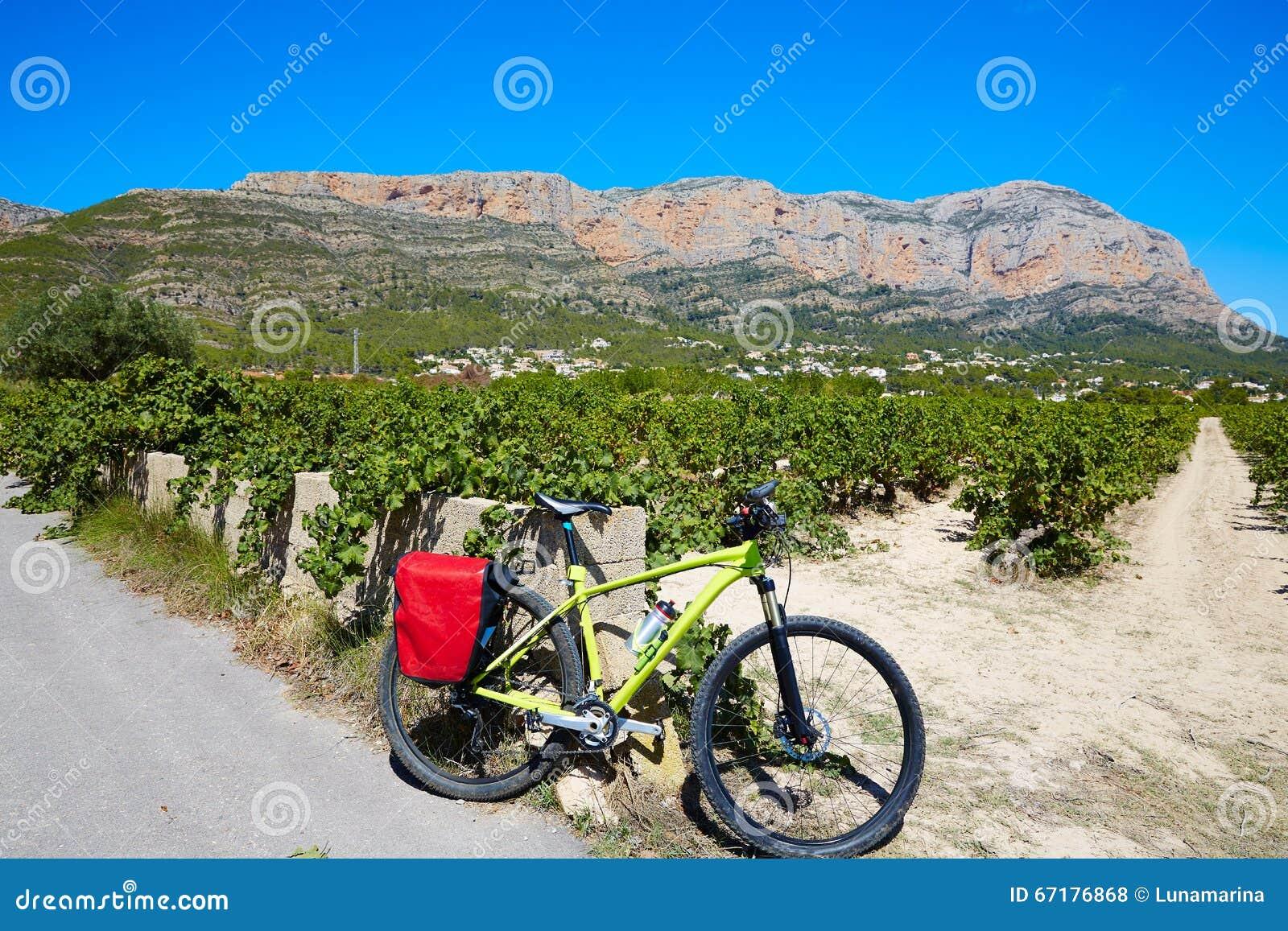 Xabia Javea Montgo vineyards biking MTB