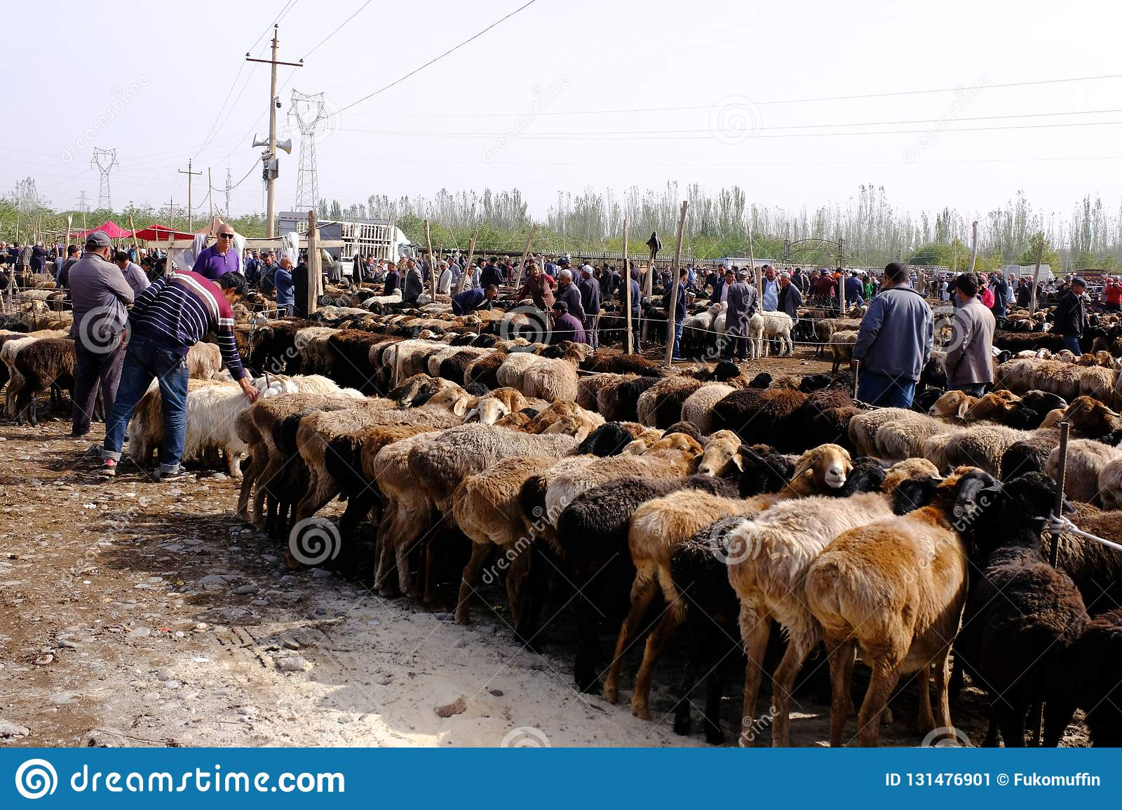 xinjiang-china-september-picture-show-uy