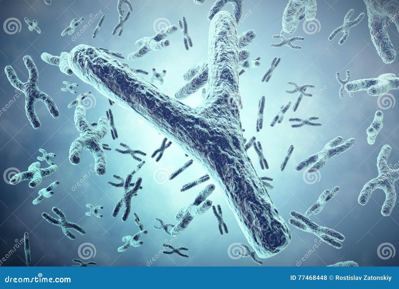 Y-kromosom i förgrunden, ett vetenskapligt begrepp illustration 3d