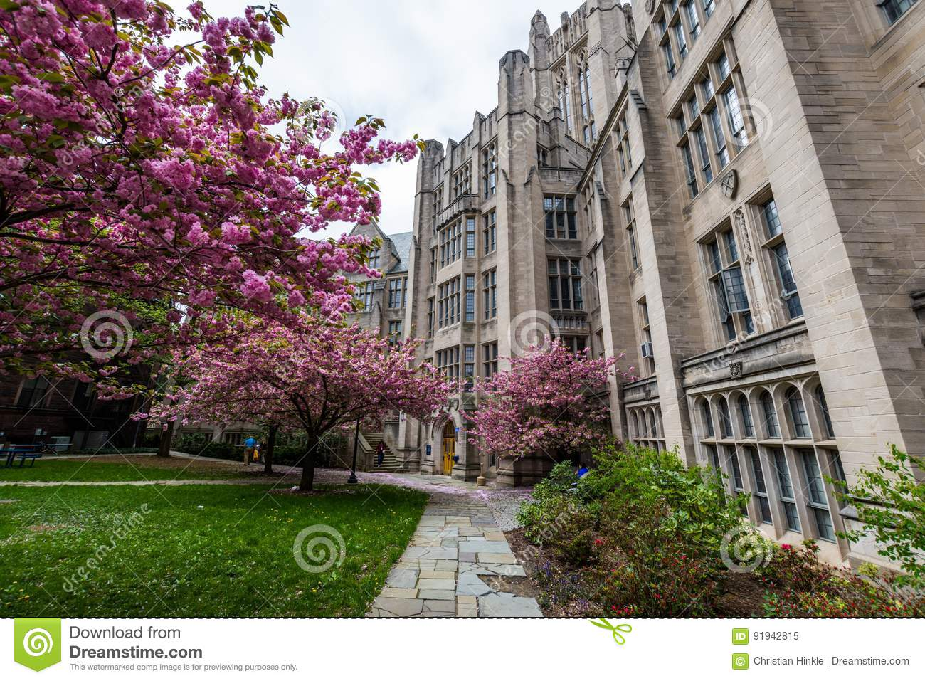 Yale University in New-Haven Connecticut