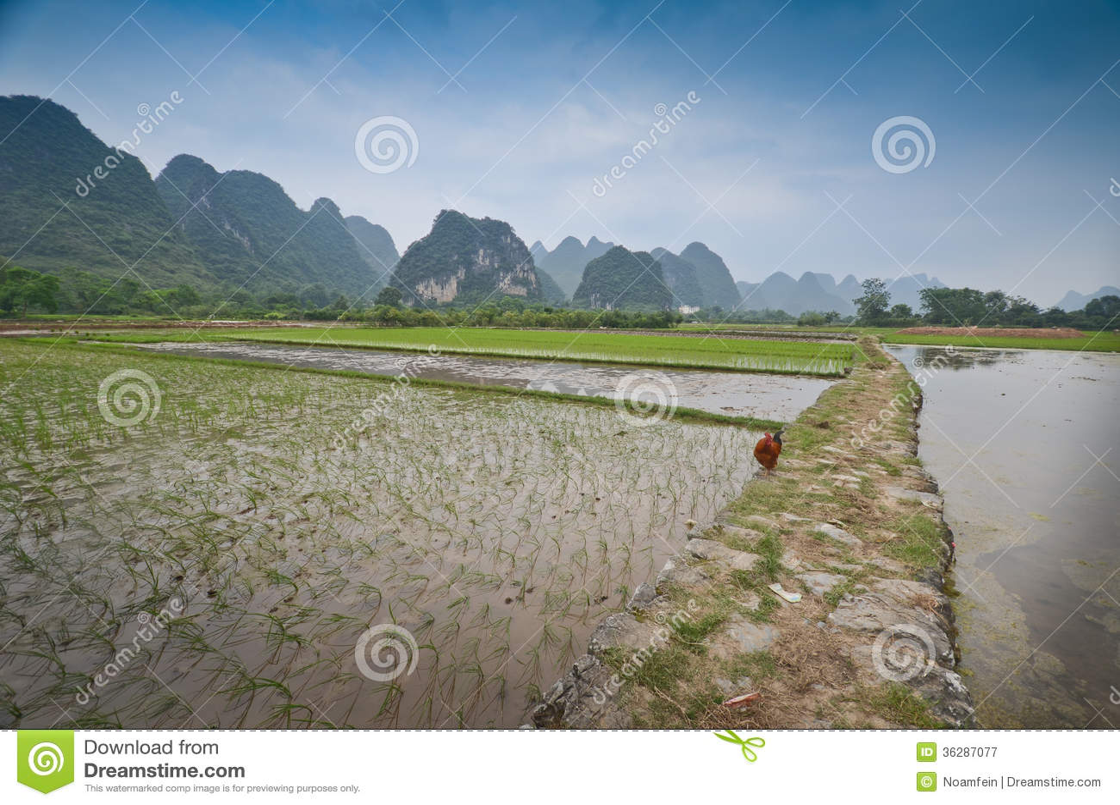 Yangshuo sceneria
