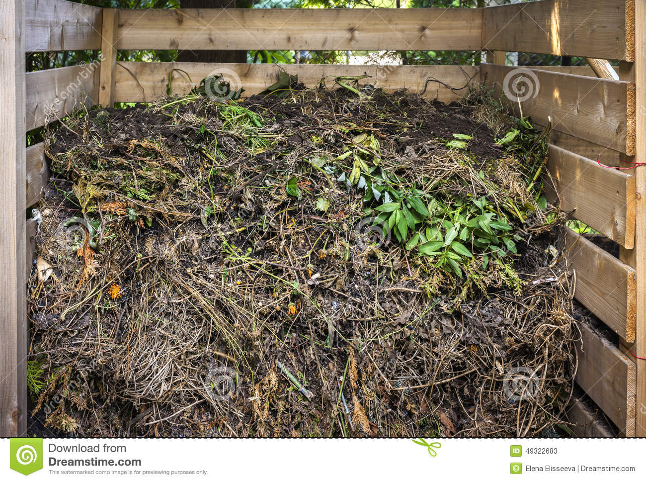 Yard Waste In Compost Bin Stock Photo Image 49322683
