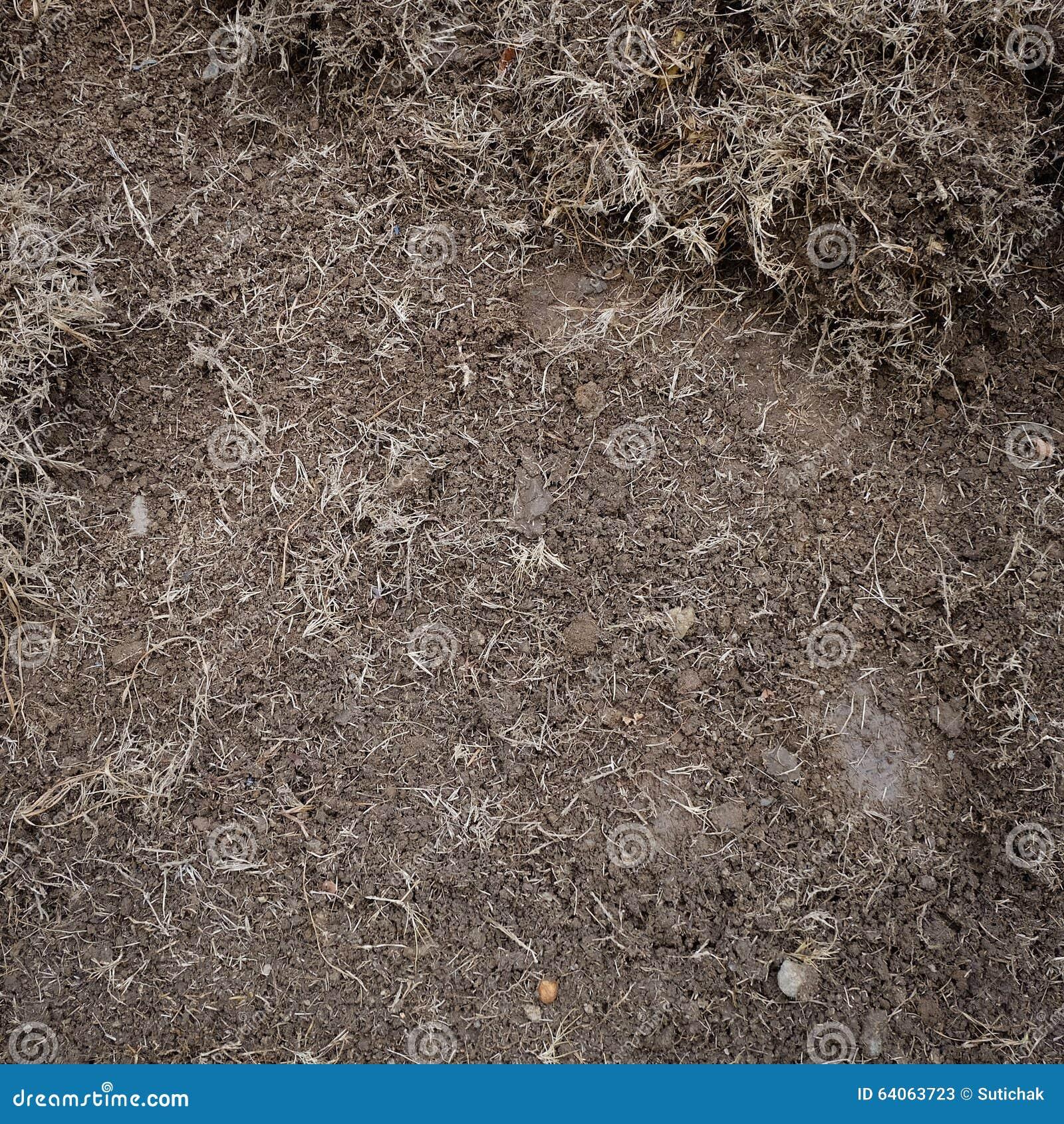 Yard work preparation soil in garden stock photo image 64063723 - Gardening works in october winter preparations ...