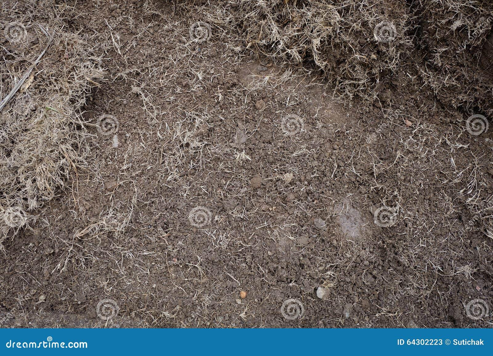 Yard work preparation soil in garden stock photo image 64302223 - Gardening works in october winter preparations ...