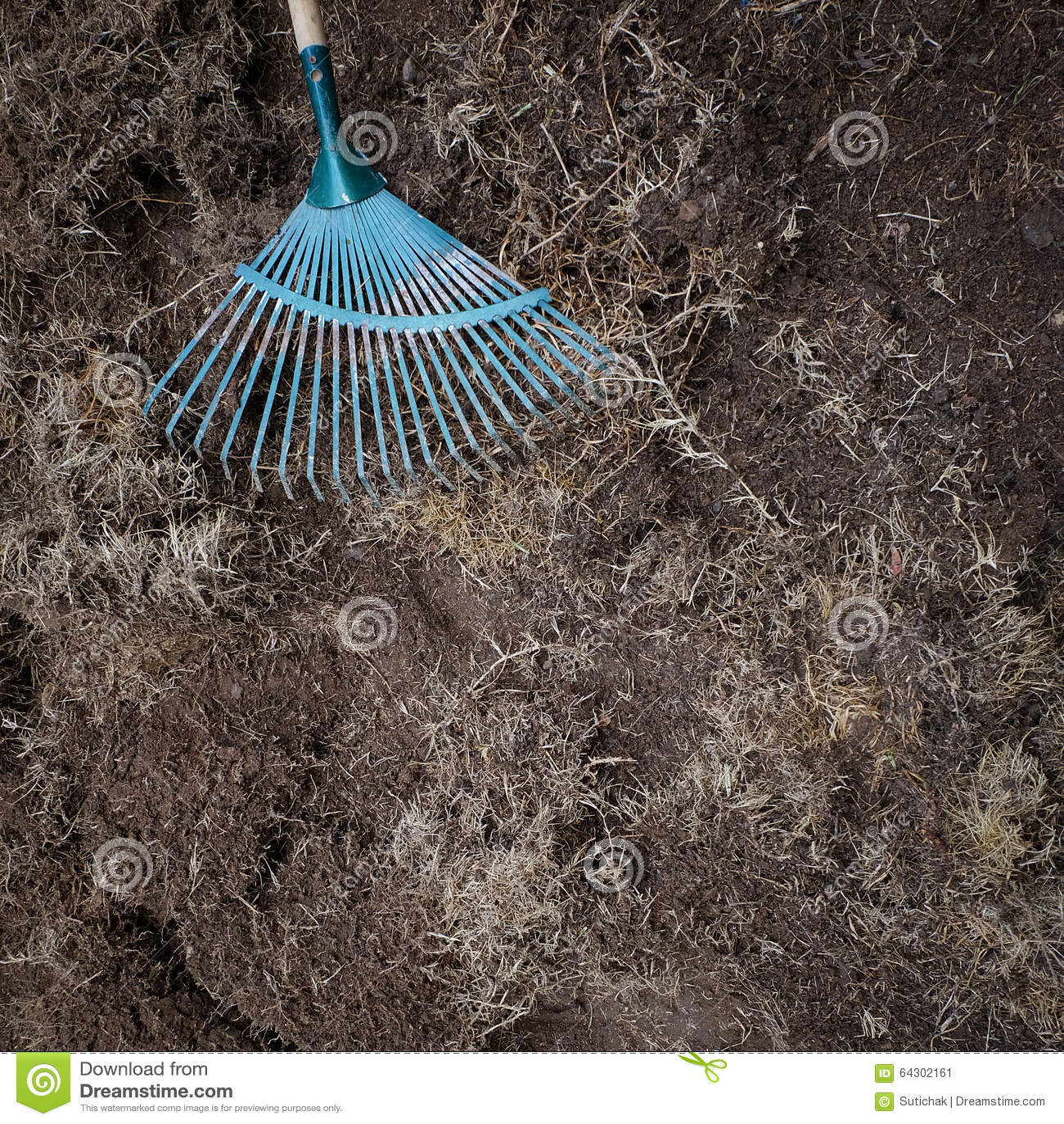 Yard work preparation soil in garden with rake stock photo image 64302161 - Gardening works in october winter preparations ...