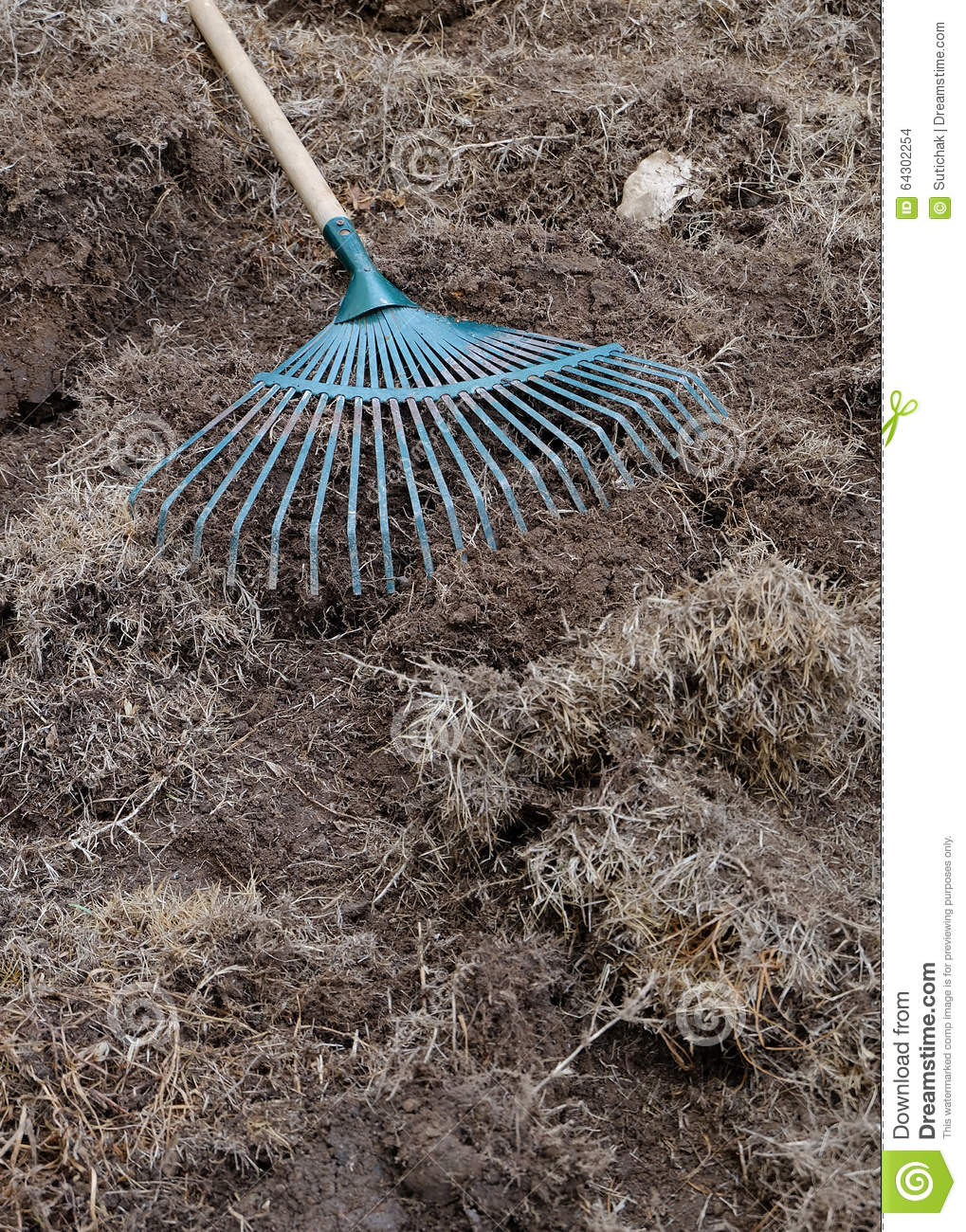 Yard work preparation soil in garden with rake stock photo image 64302254 - Gardening works in october winter preparations ...