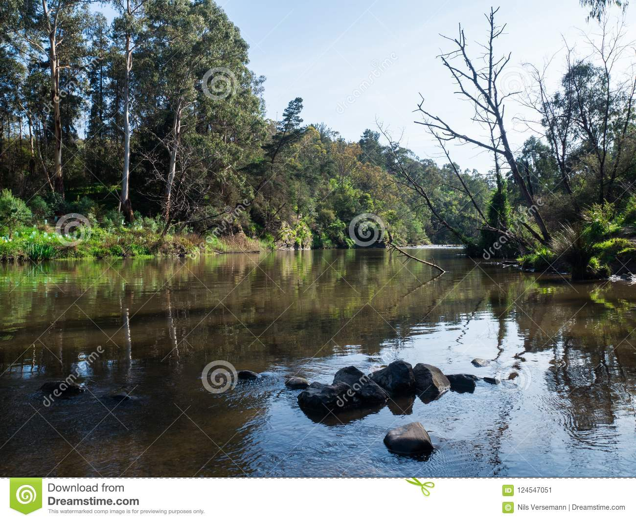 Warrandyte melbourne