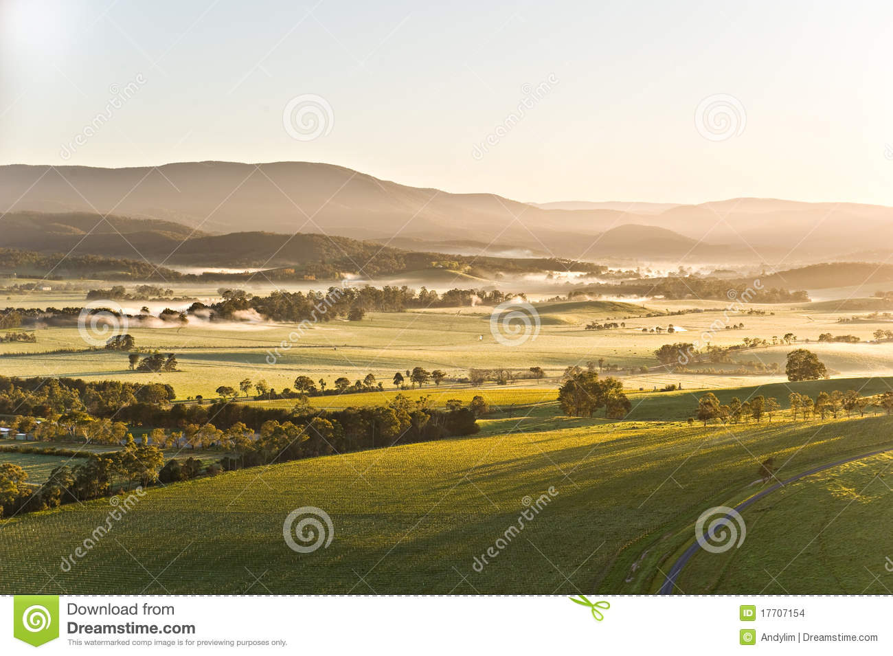 Yarra Valley Australia  City pictures : Yarra Valley landscape in Victoria, Australia on a clear spring ...