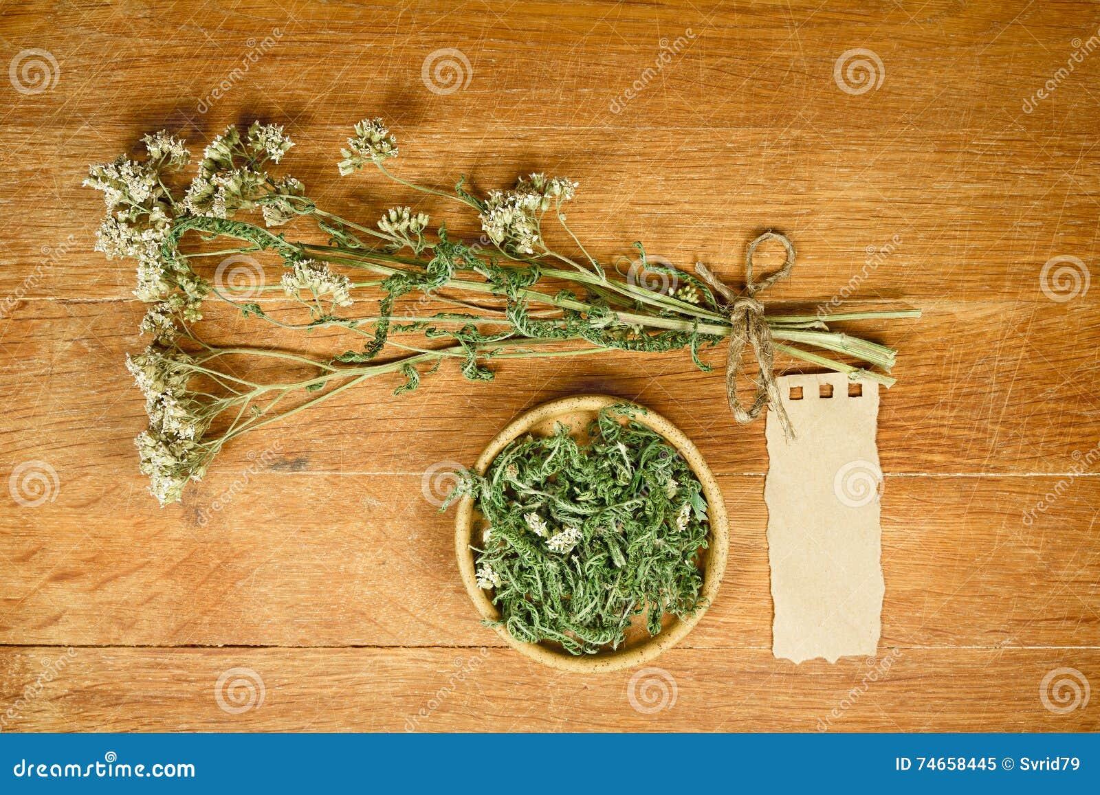 Yarrow высушено Фитотерапия, phytotherapy целебные травы