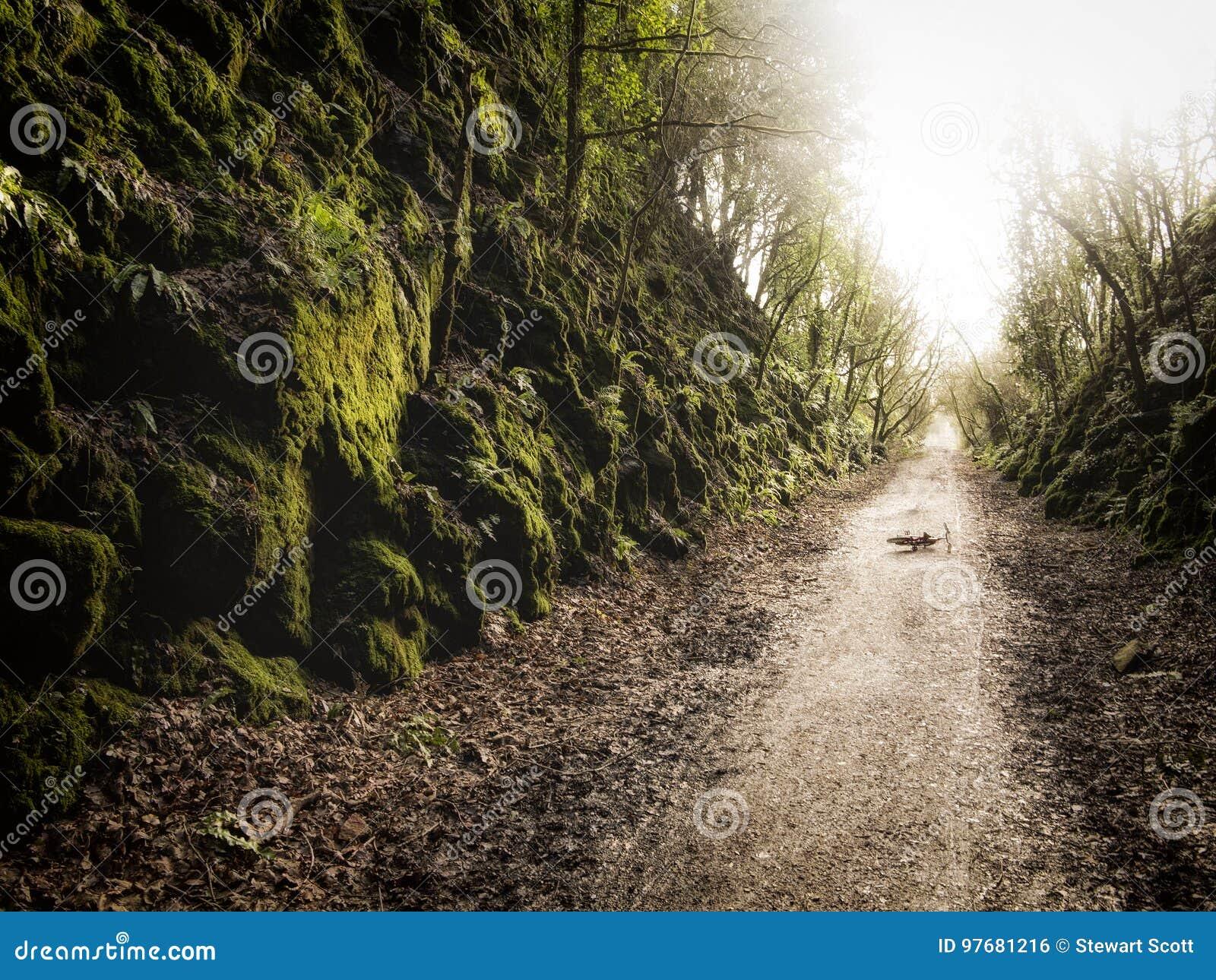 Życia ` s ścieżka