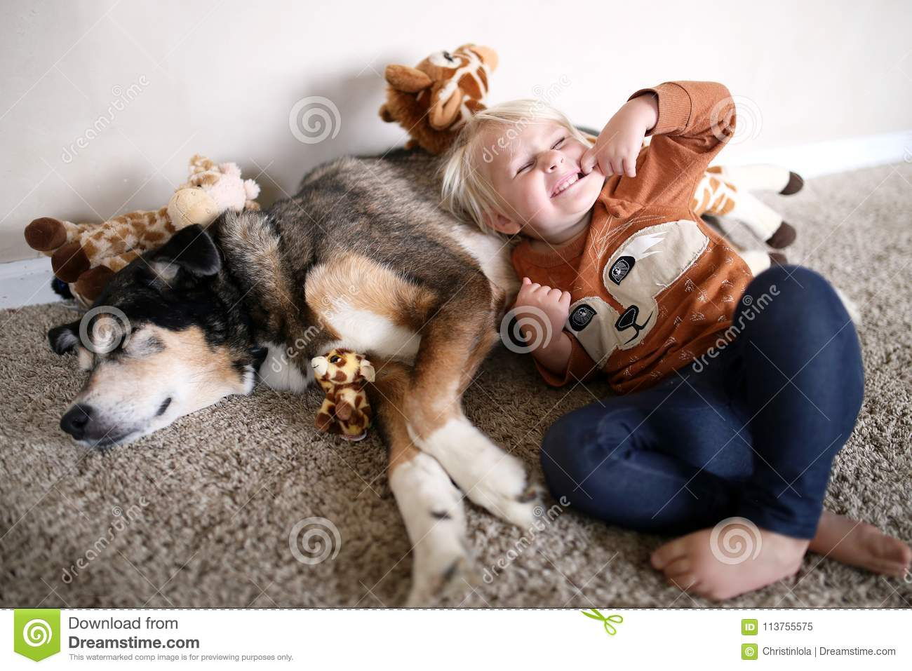 Young Child Playing With Her Pet German Shepherd Dog And Giraffe