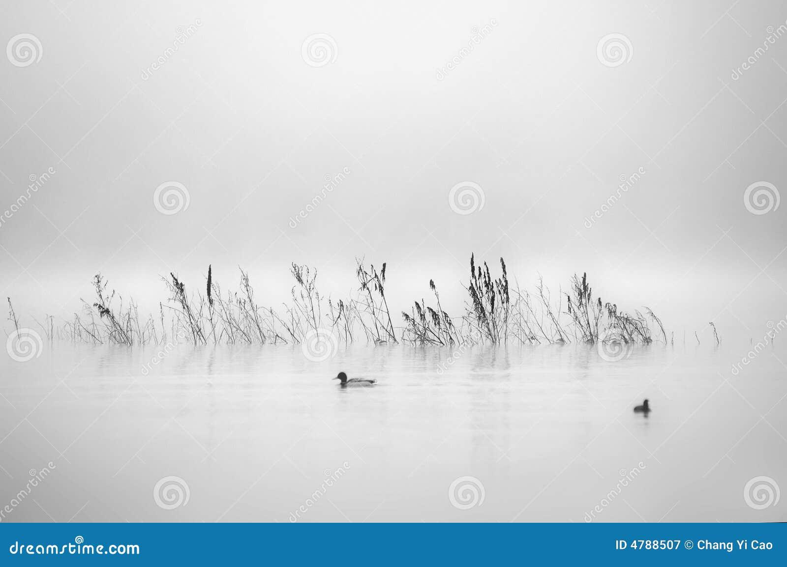 Yearning Lake 4