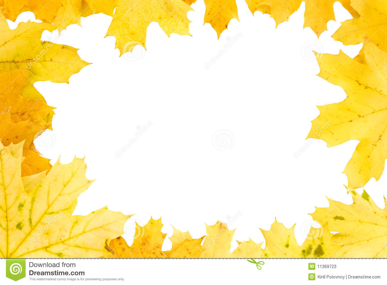 yellow autumn leaves fall frame stock photos image