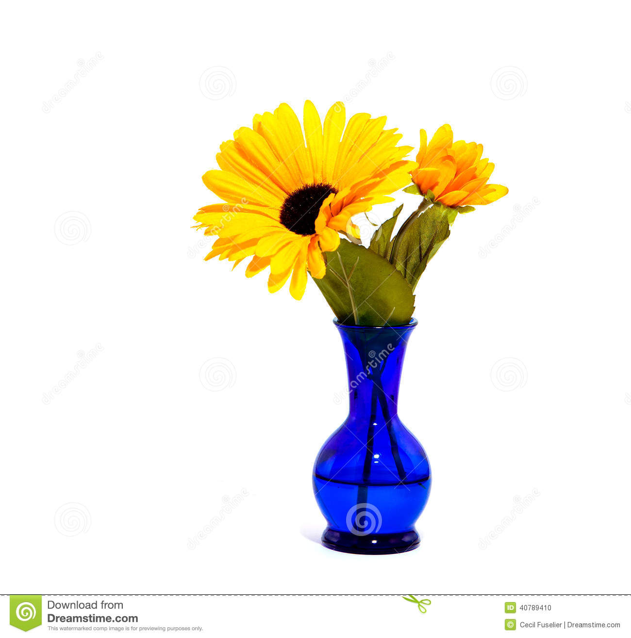Flowers Cobalt Blue And Yellow Stock Photo Image Of Still Blue
