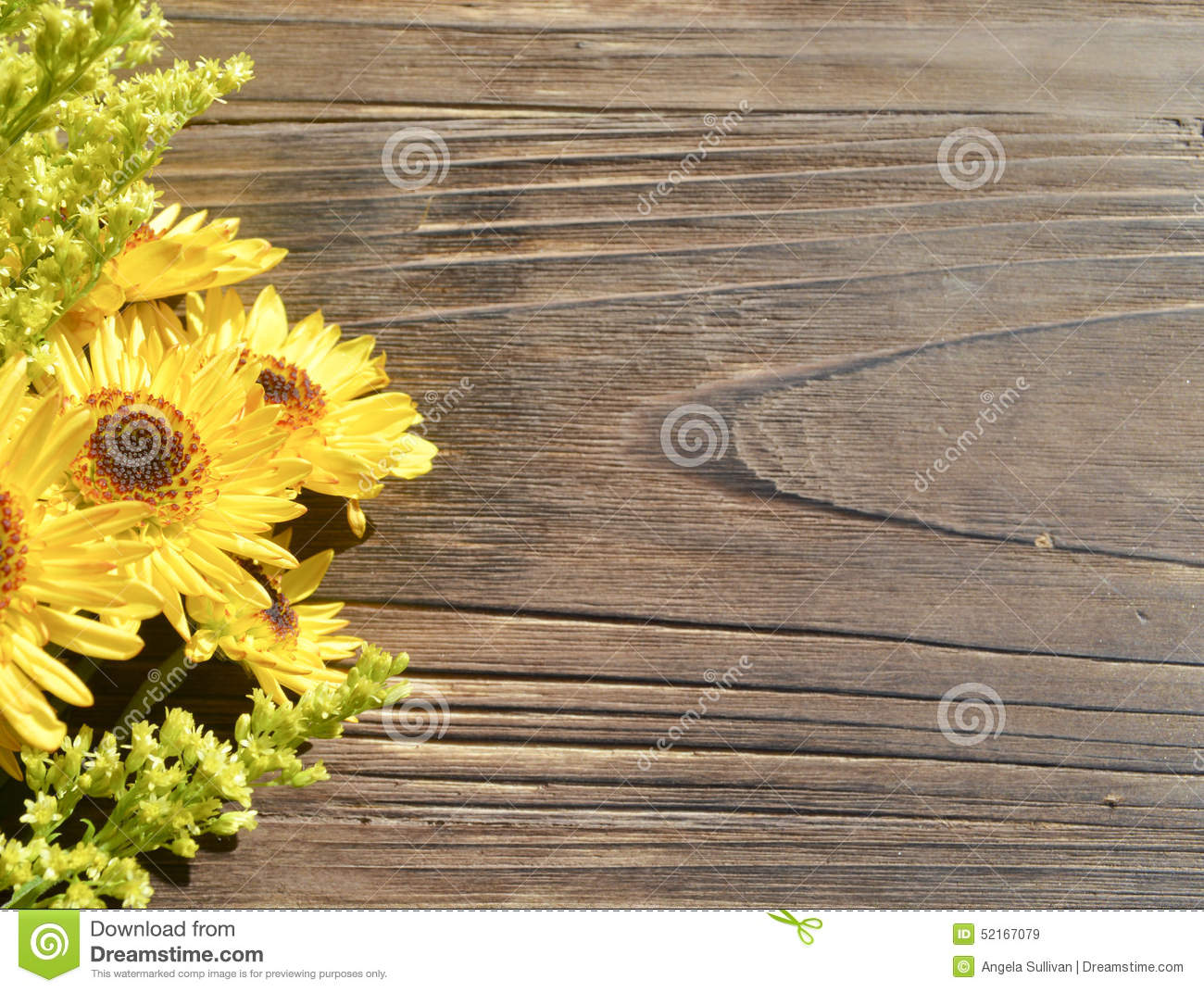 outdoor woods backgrounds. Fine Backgrounds Outdoor Woods Backgrounds Yellow Daisies Wood Background Outdoor Woods  Backgrounds N And C