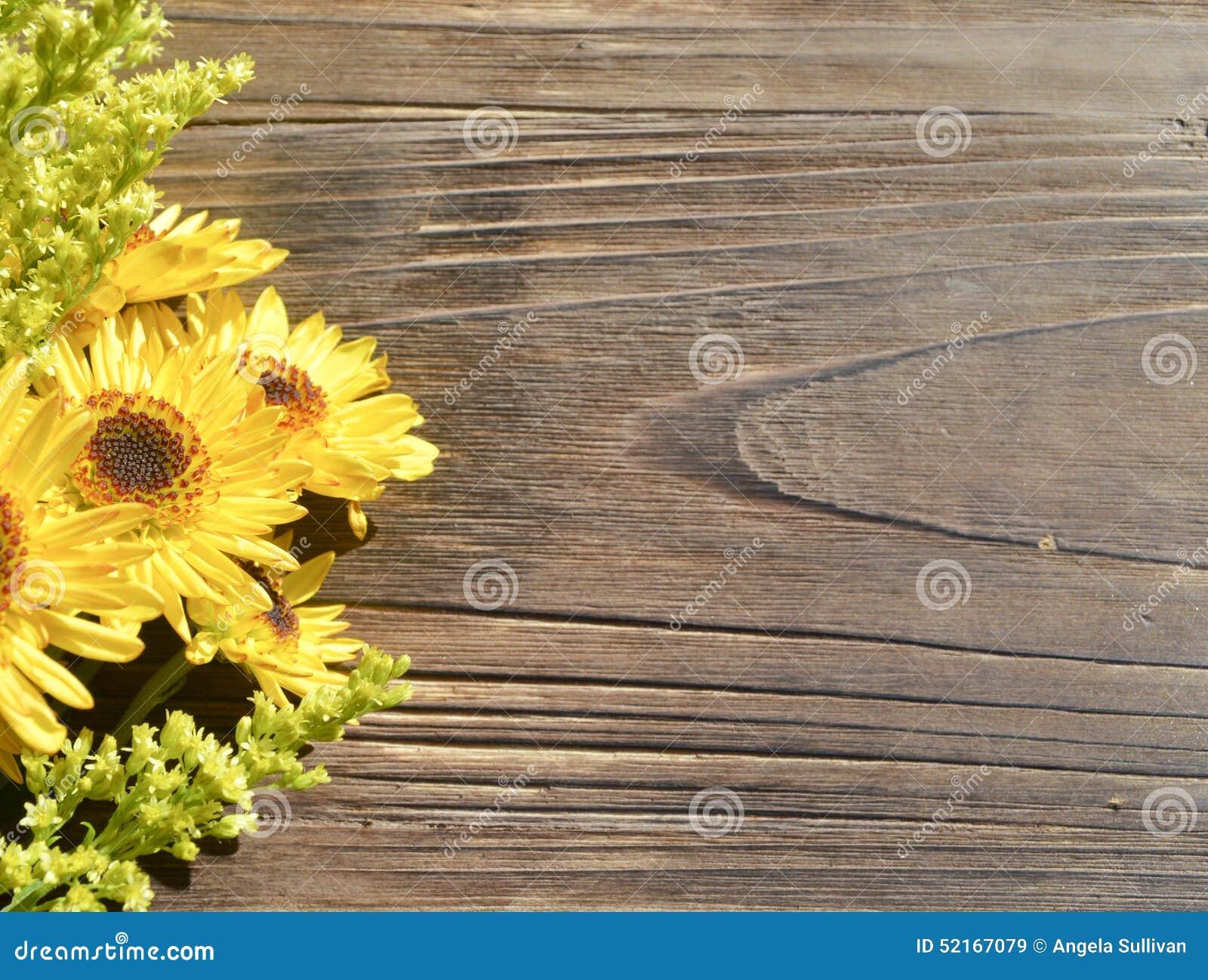 Yellow Daisies Wood Background Stock Photo