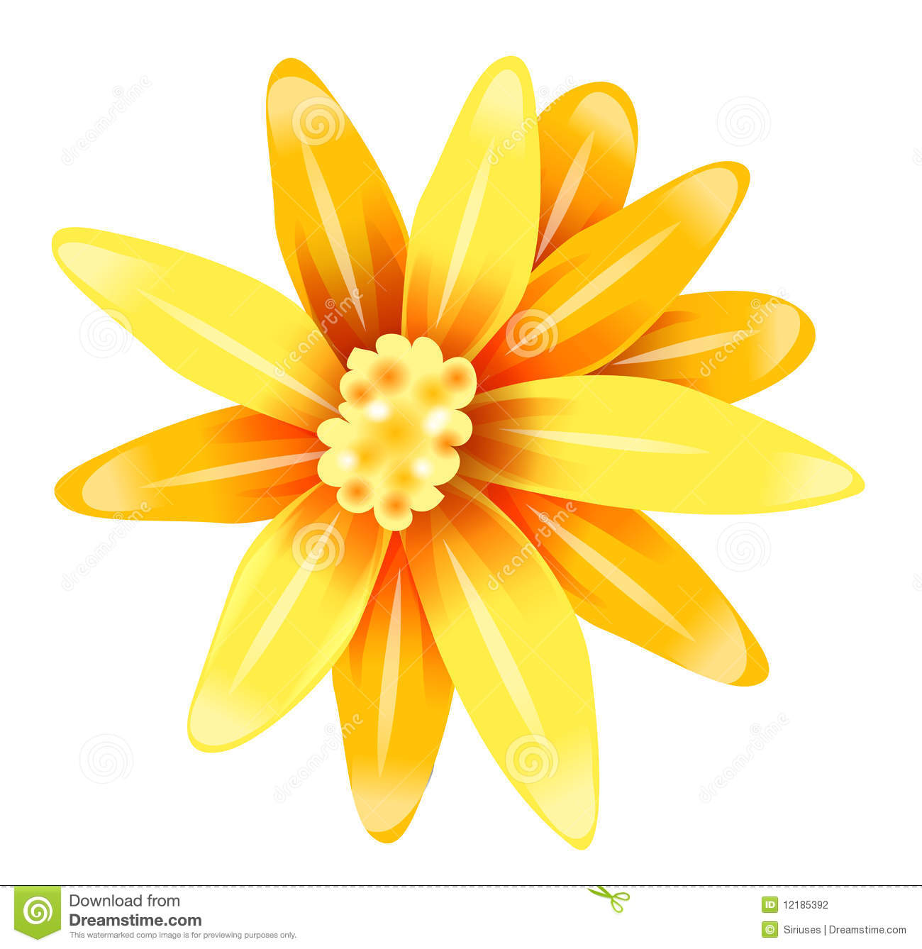 Yellow Daisy Flower Stock Photography Image 12185392