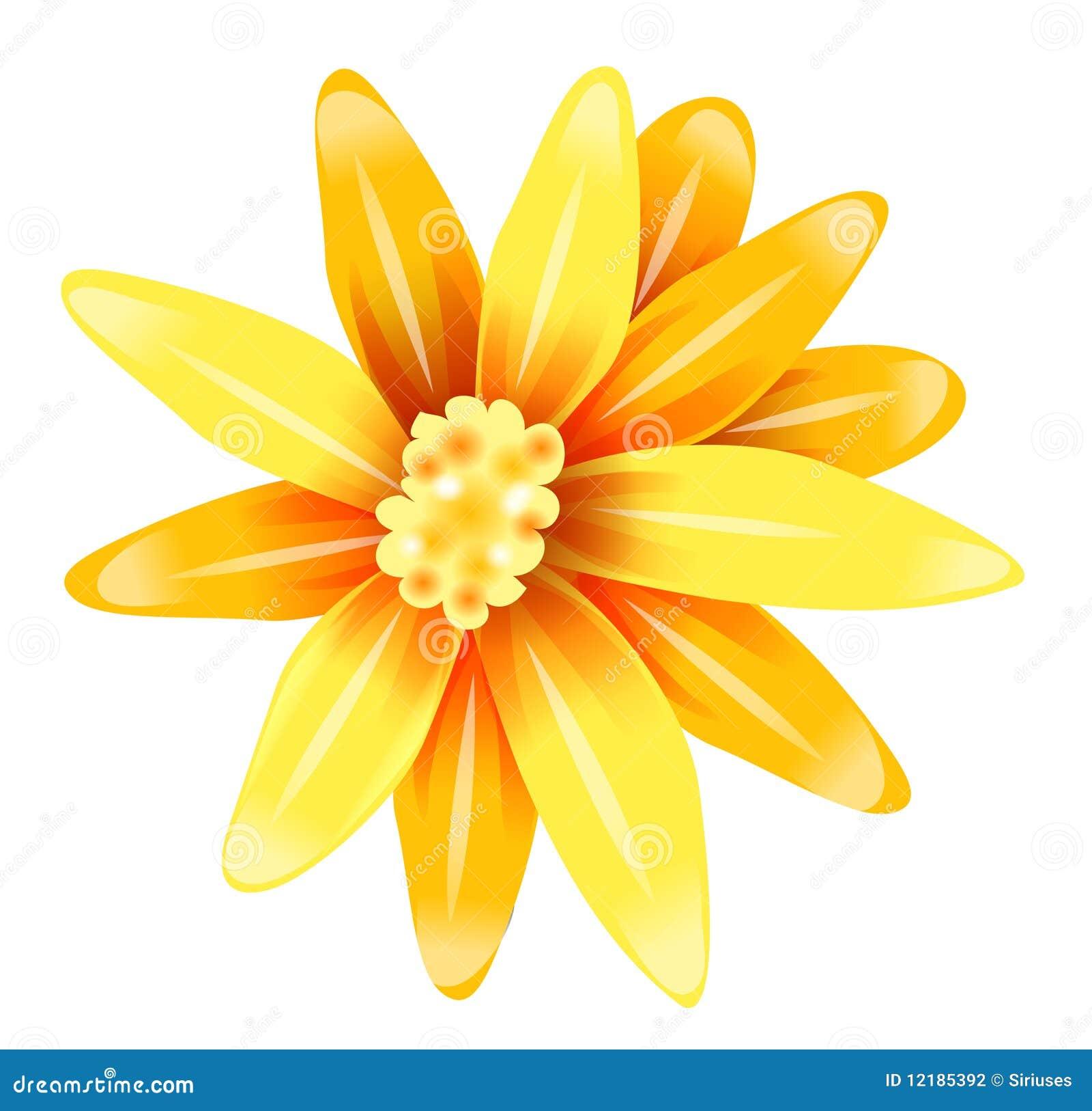 Yellow Daisy Flower Drawing Comousar