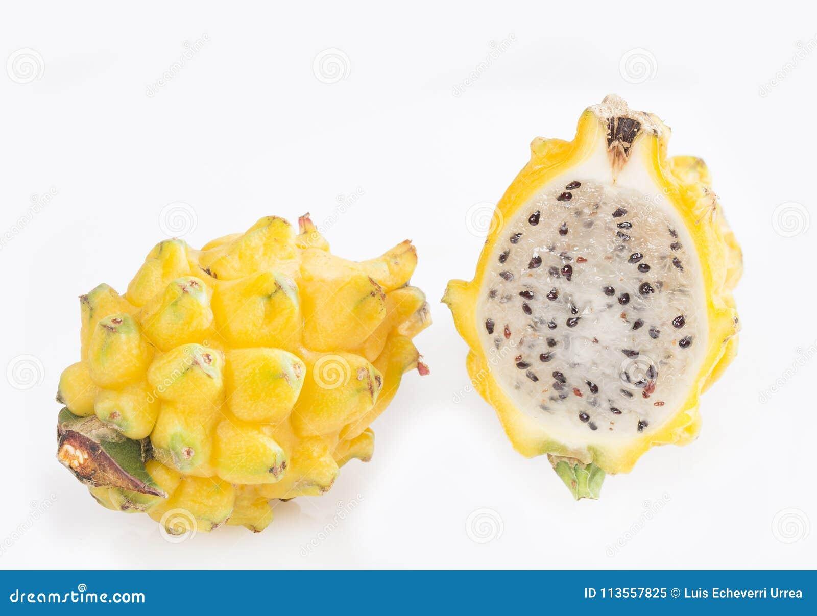 Yellow Dragon Fruit Selenicereus Megalanthus Stock Image Image