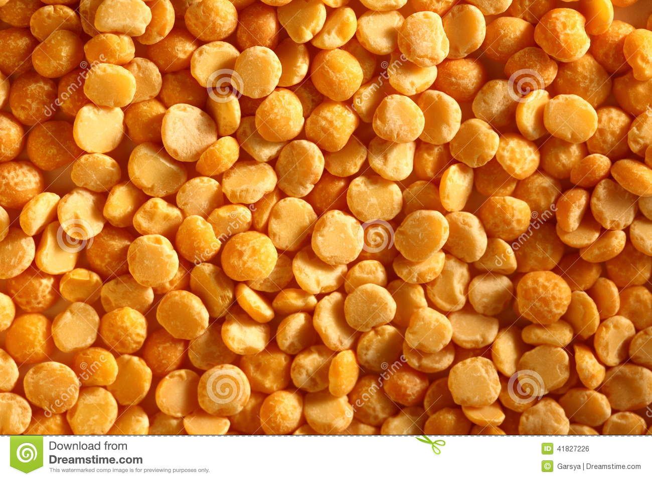 is a dried yellow pea a Split yellow peas belong to the same family as lentils and are highly nutritious—high in both protein and fiber a half-cup serving of cooked split peas (cup dry) provides 110 calories, 10 grams of protein (20% of the daily value), less than one gram of fat and 12 grams of dietary fiber.
