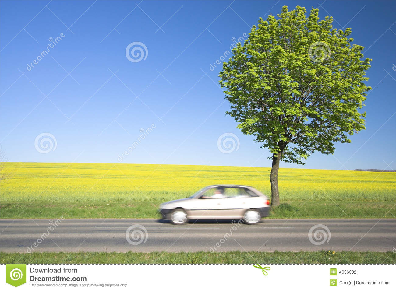 Yellow field with a fast car.
