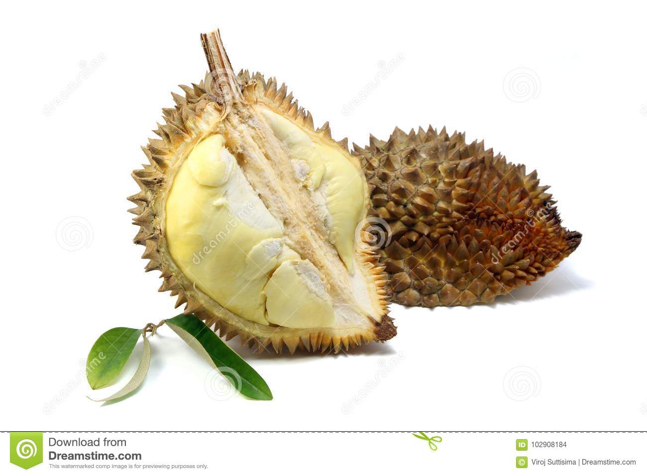 Yellow flesh of Durian and Durian leaf on white background.