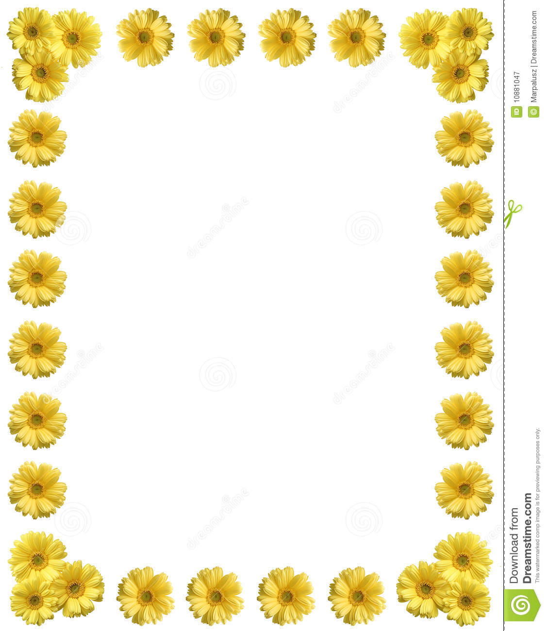 Yellow Flower Frame With Copy Space Royalty Free Stock Photography ...