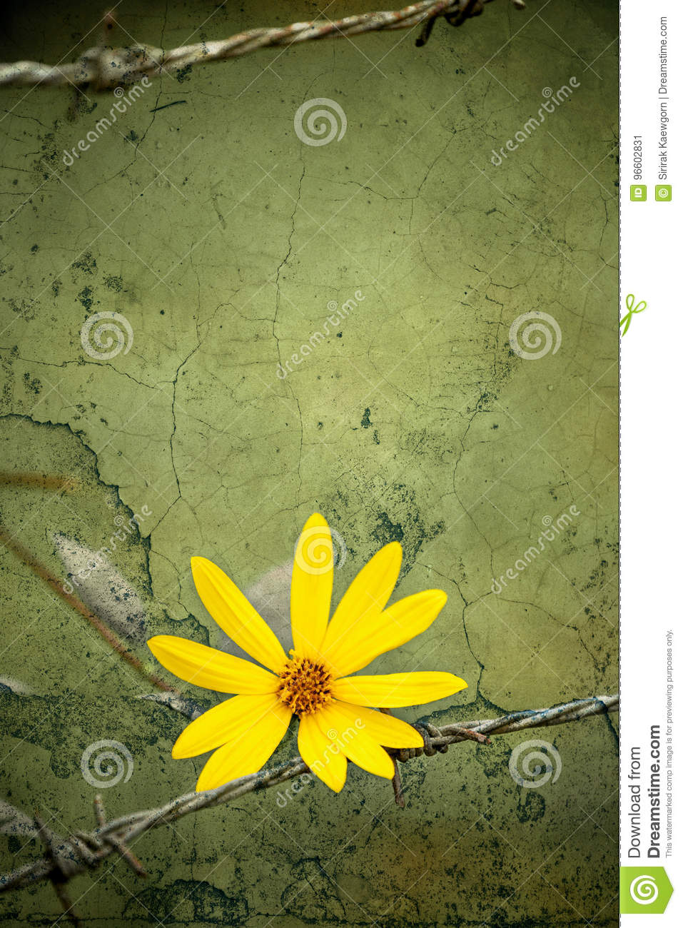Yellow Flower The Symbol Of Freedom Over Vintage Grungy
