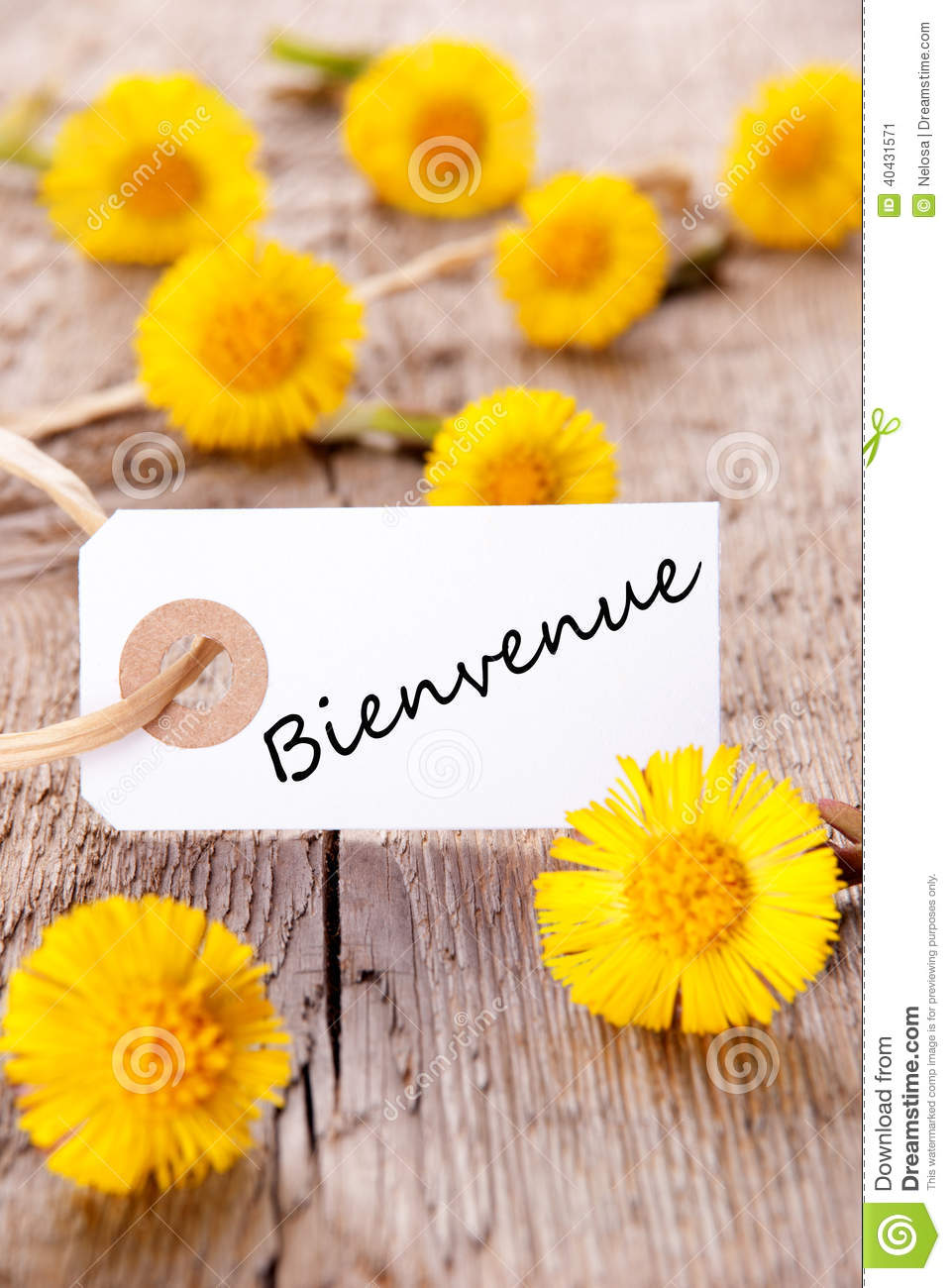 Yellow flowers with bienvenue stock image image of happy download comp mightylinksfo