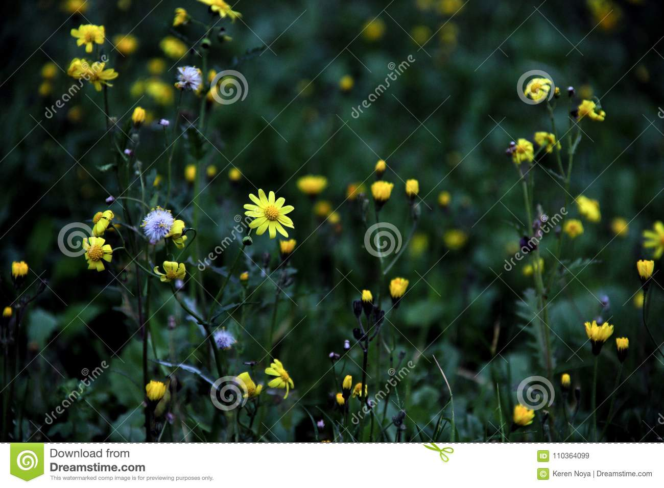 Green And Yellow Cute Spring Floral Pattern Stock Image Image Of