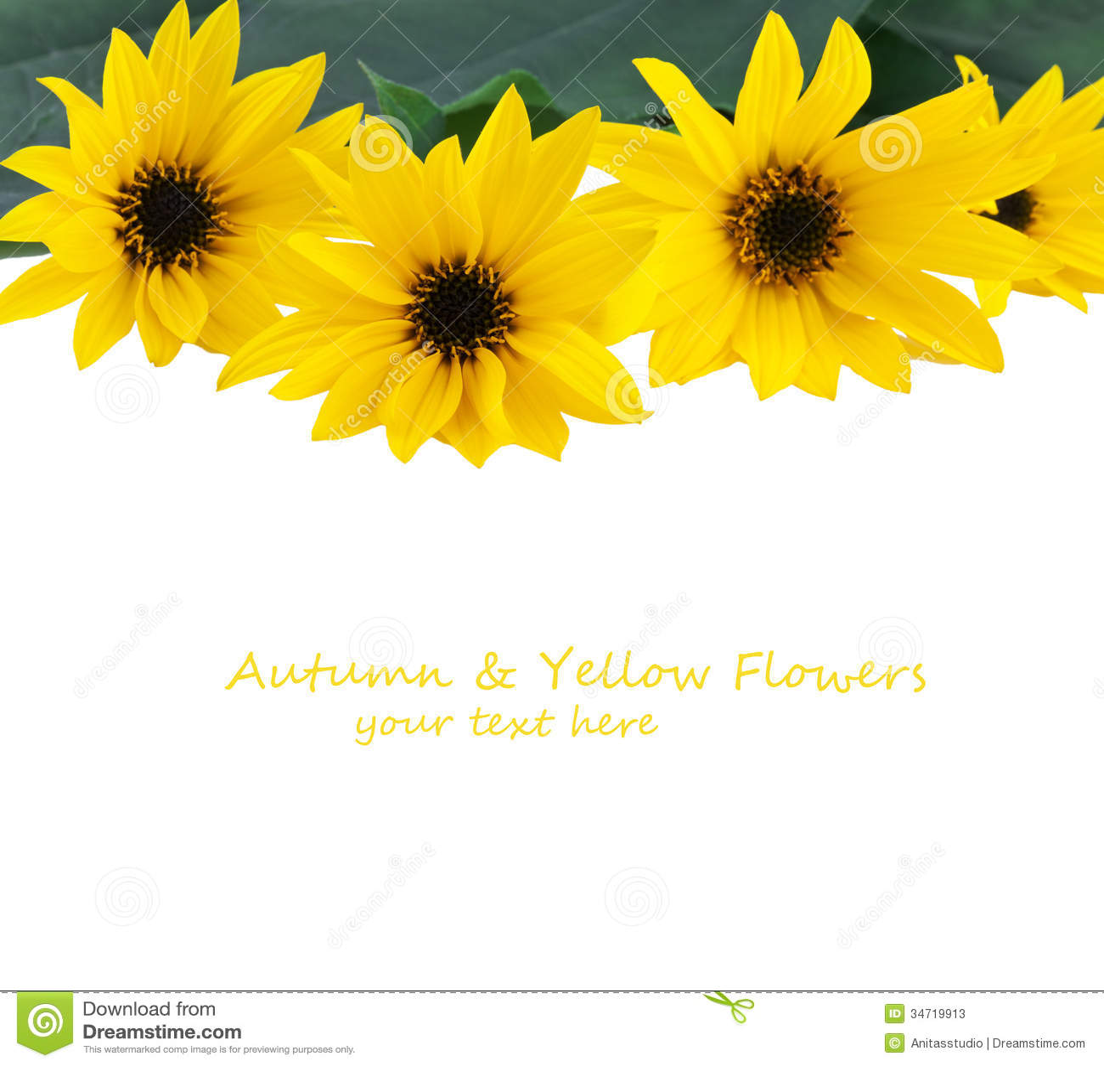 Yellow Flowers Border Stock Photos - Image: 34719913