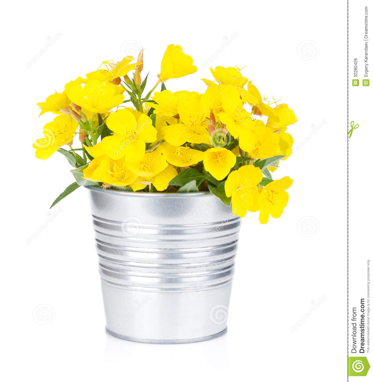 Yellow flowers in bucket royalty free stock image image for Bucket of flowers papercrafting