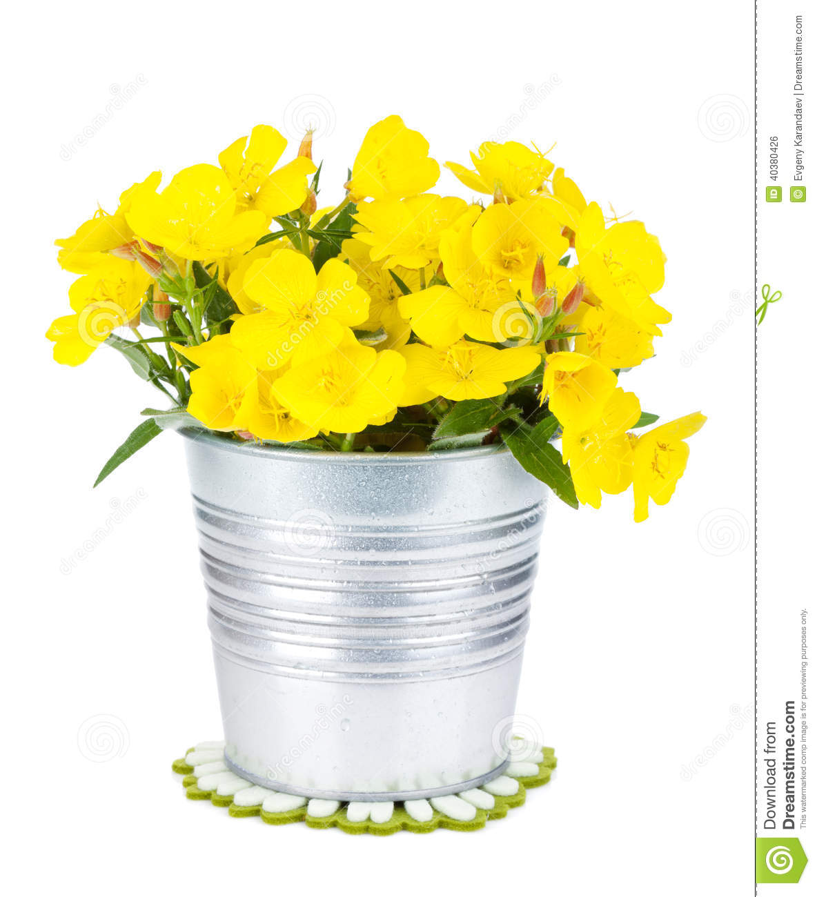 Yellow flowers in bucket stock photo image 40380426 for Bucket of flowers papercrafting