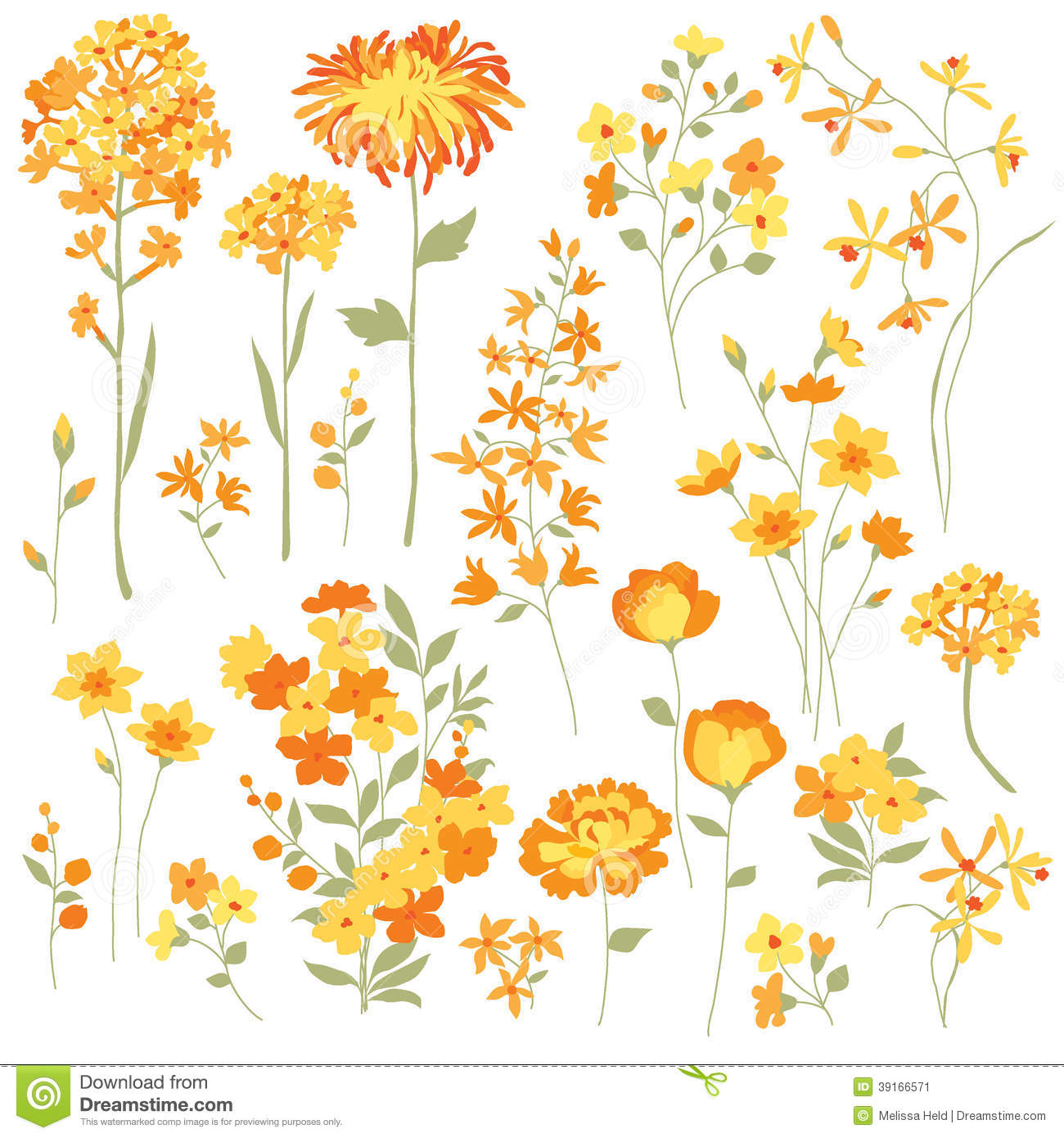 Yellow Flowers Stock Image Illustration Of Flowers Chrysanthemum