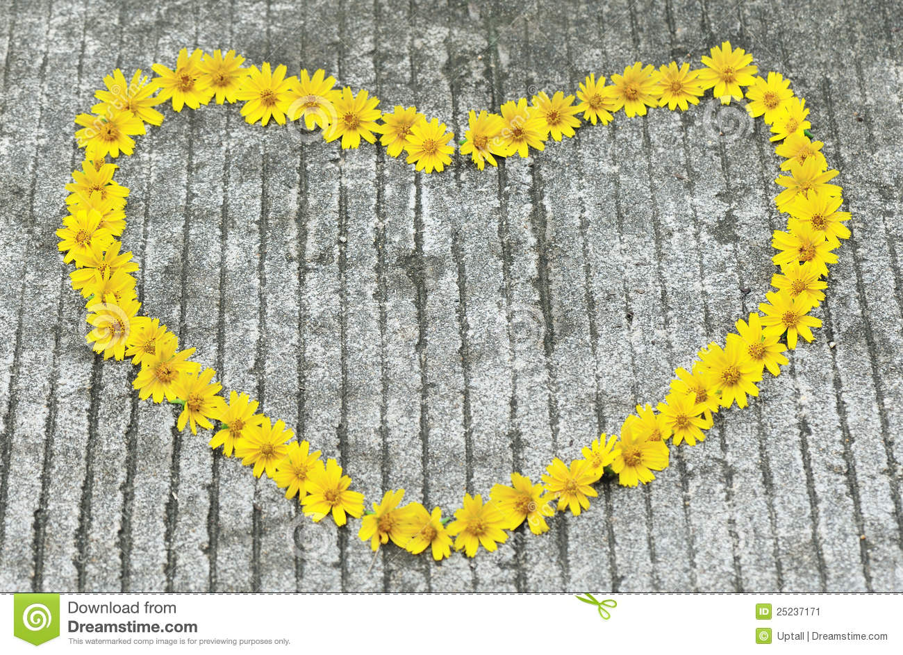 Yellow flowers in heart shape stock image image of petal wild download yellow flowers in heart shape stock image image of petal wild 25237171 mightylinksfo