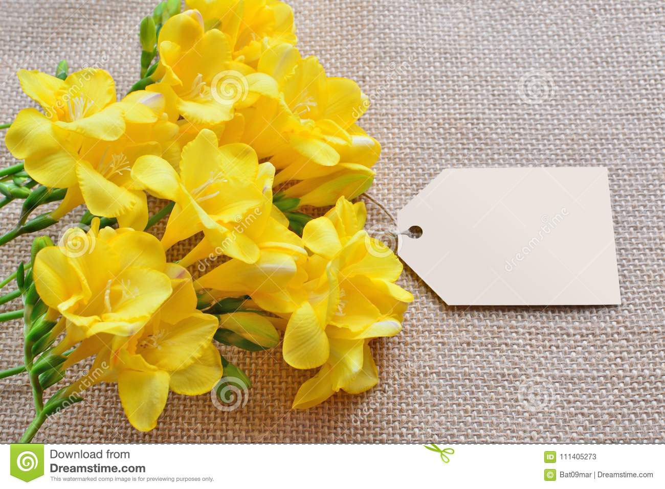 Yellow Freesia Flowers With An Empty Card Over Burlap Stock Image