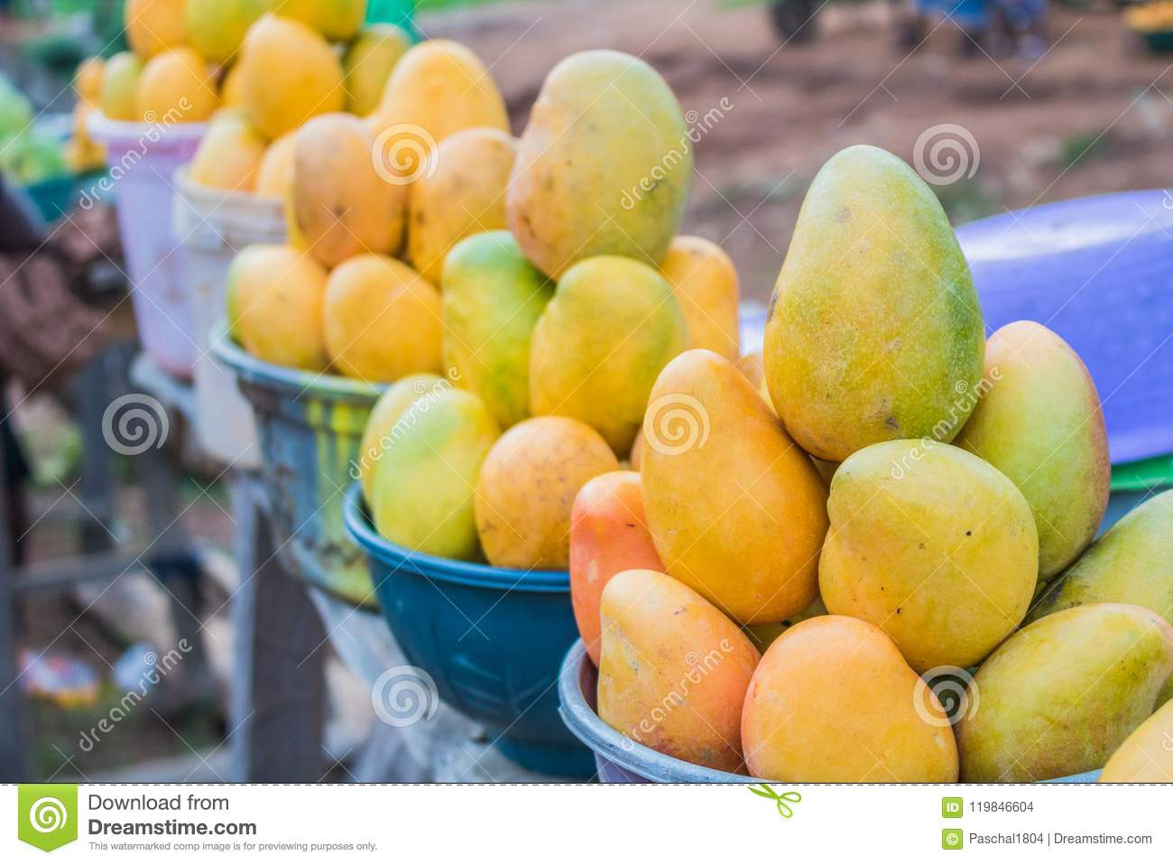 African Red Yellow And Green Mangoes 4 Stock Photo Image Of Delicious Healthy 119846604