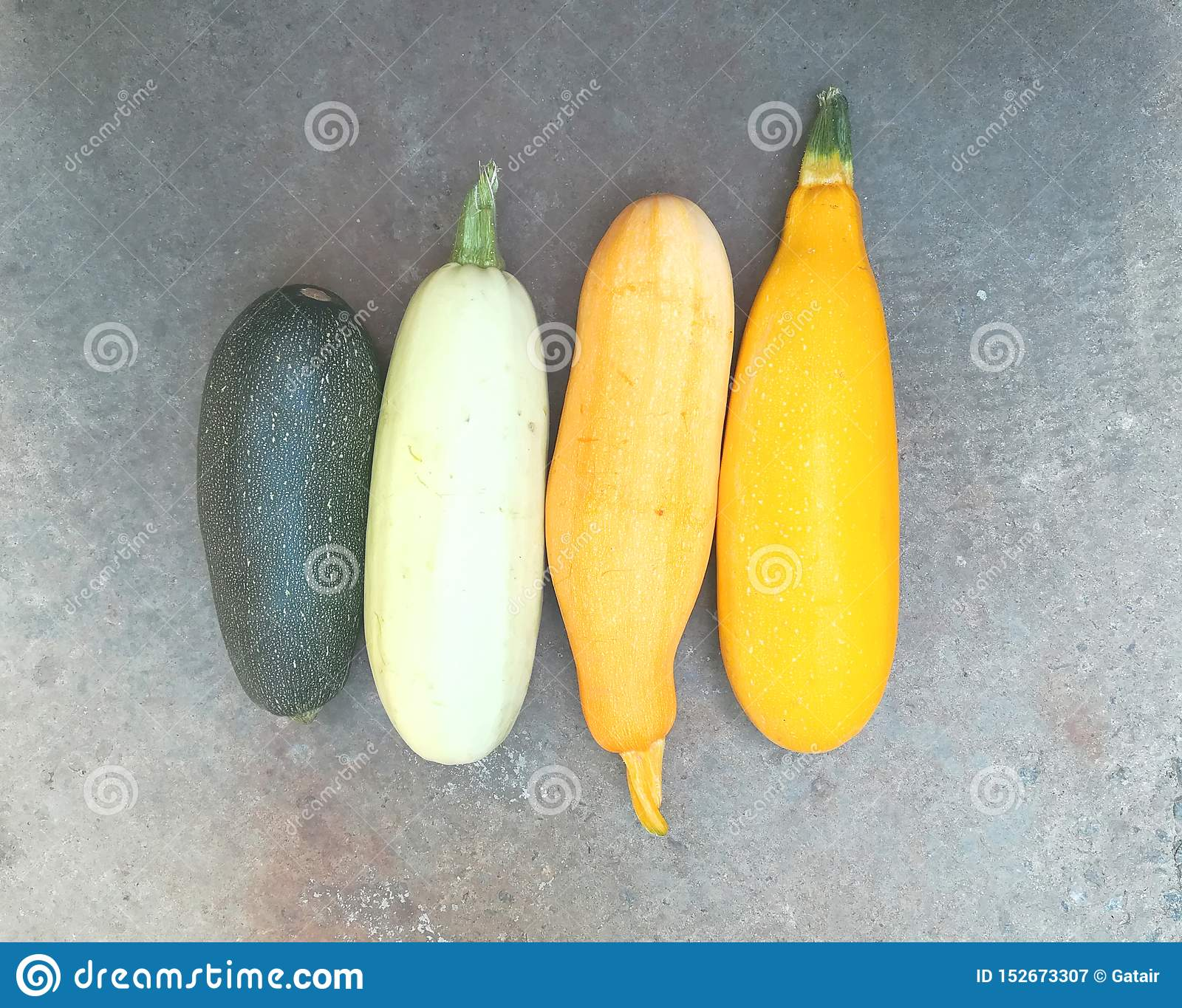 Yellow and green colored zucchini are on the pavement. Multicolored vegetables. New crop. Summer autumn. Freshly plucked zucchini