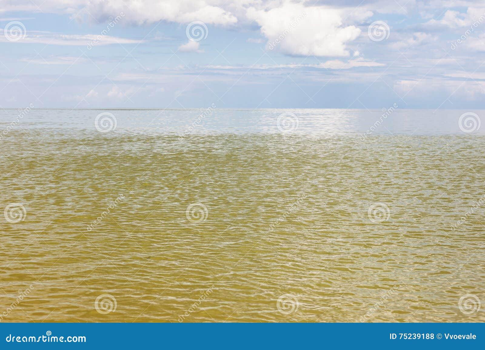 Yellow Green Water Sea Of Azov Stock Photo - Image of