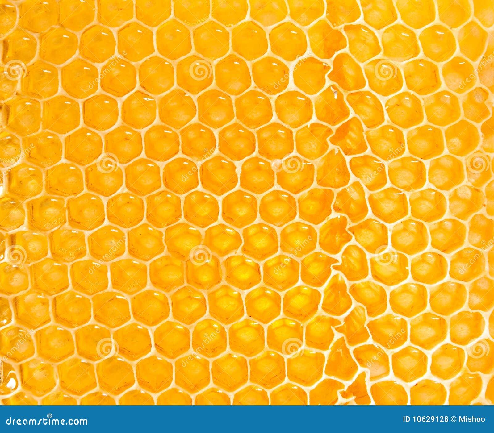 Yellow Honeycomb Royal...