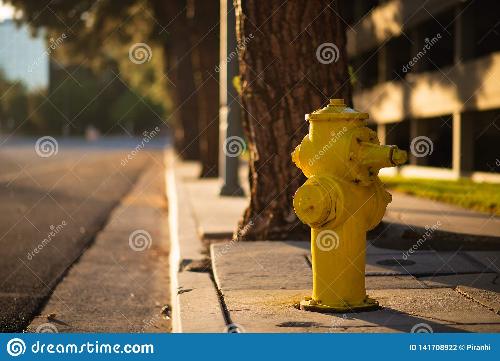 A yellow Hydrant next to the side of a road during sunset in LA, America
