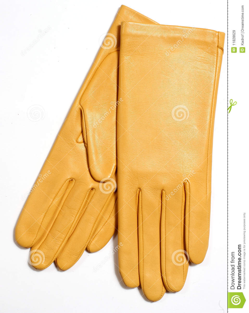 Ladies leather gloves yellow - Yellow Leather Gloves Royalty Free Stock Images Image 11828629