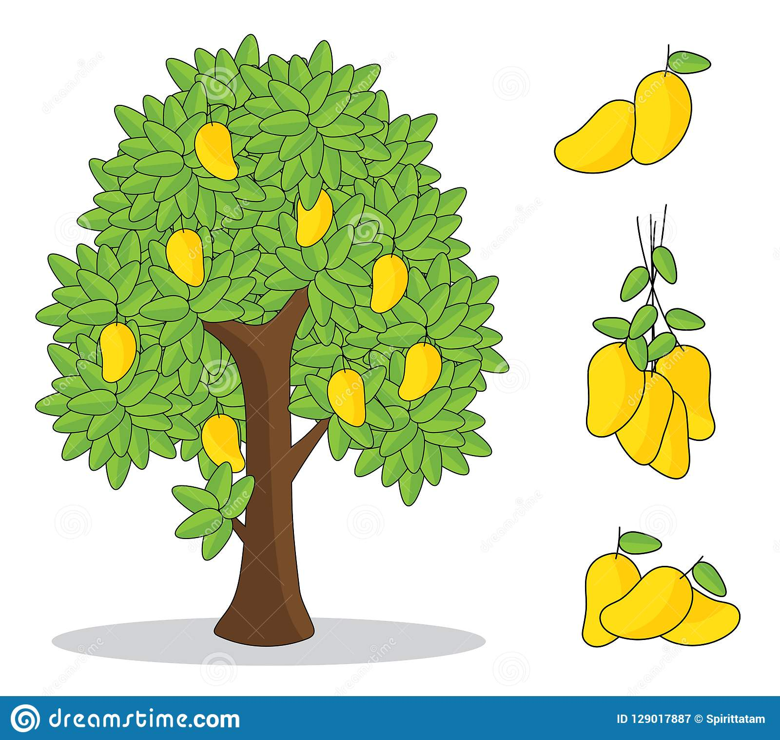 Mango Tree Stock Illustrations 4 231 Mango Tree Stock Illustrations Vectors Clipart Dreamstime