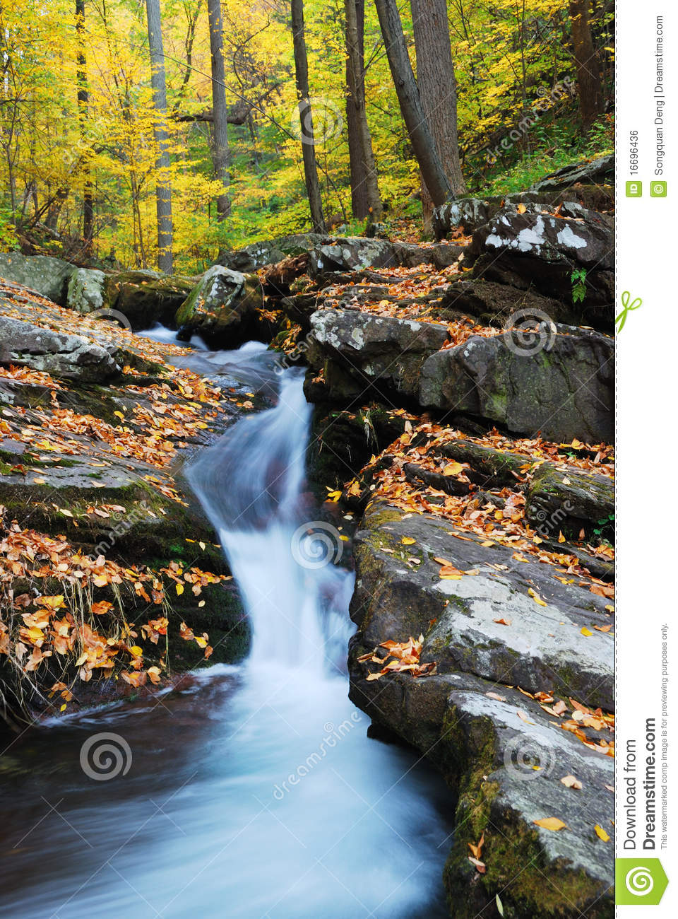 Royalty Free Stock Image Meditation By The River Male