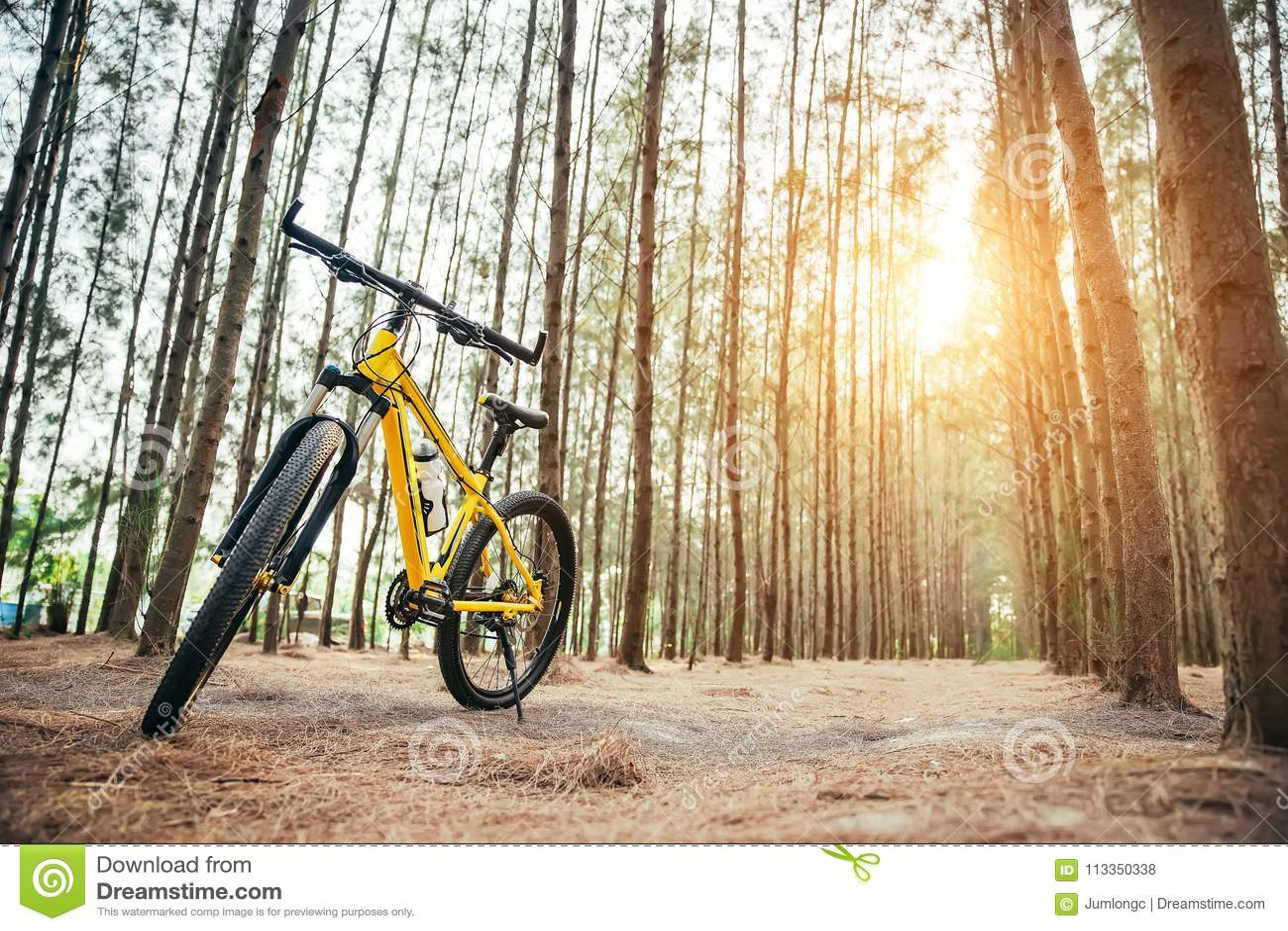 A yellow MTB bicycle along