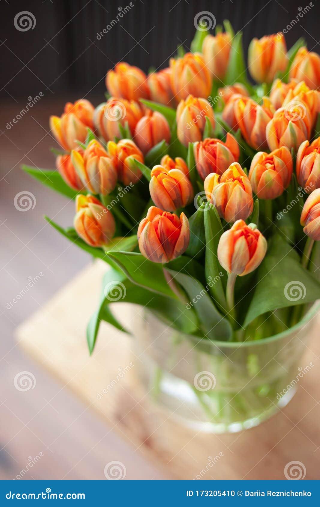 Yellow Orange Tulips Bouquet In Glass Vase. Stock Photo ...